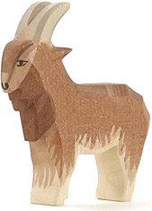 Goat, male-11711