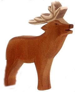 Red Deer, stag-15351