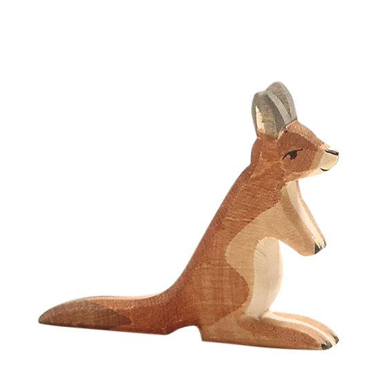 Kangaroo small-2065