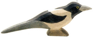 Magpie-16809