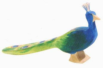 Peacock-11844