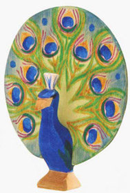 Peacock Open-11841