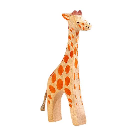 Giraffe standing-21801