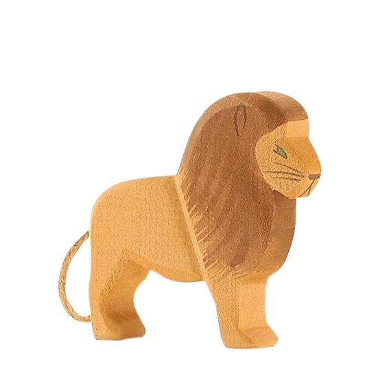 Lion male-20001