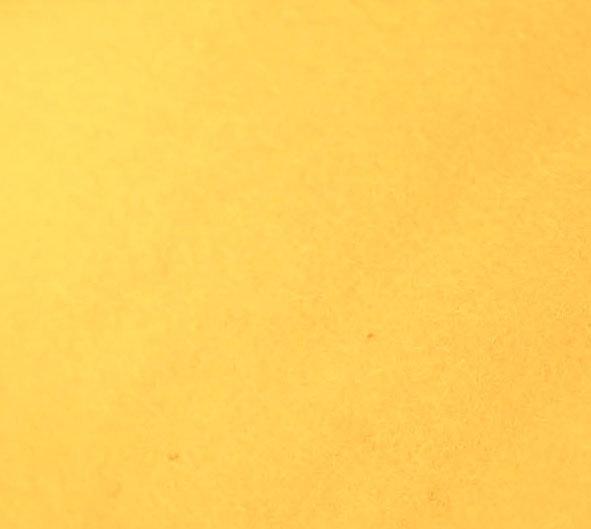 Golden Rod - Merino Wool Felt