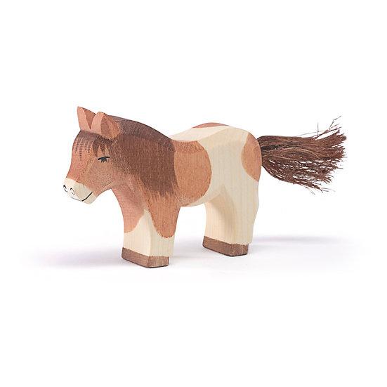 Shetland Pony standing 11303