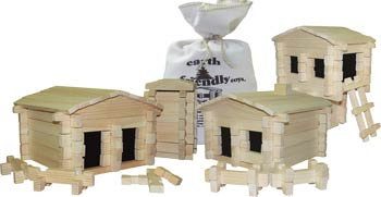 Deluxe, 250-pc Earth-Friendly Building Set Item #2