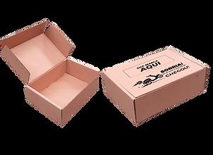 caixa correio-.png