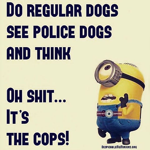 Minions police quote.jpg