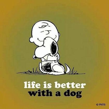 peanuts dog quote.jpg