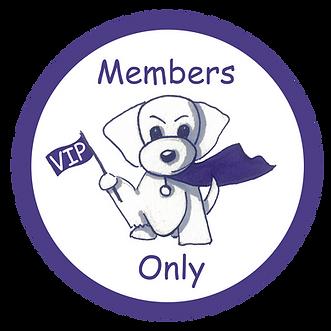 VIP Logo.png