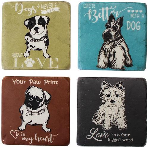 Coloured cute dog Coasters