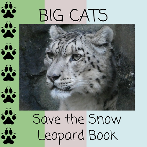 Big Cats Book - Save the Snow Leopard - 10 pages