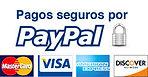 Pagos seguros por PayPal - Baucis Languages