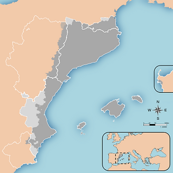 Curs de català regular - Adults. Barcelona. Baucis Languages
