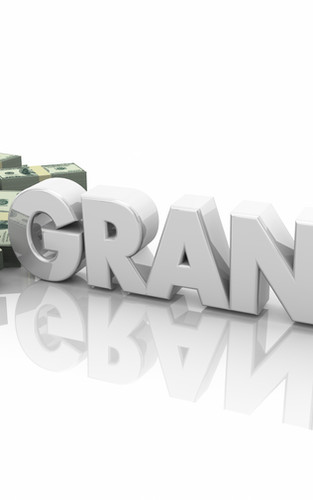 Grant and Proposal Development