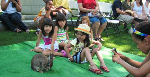 "Photos: Children learning about forest ecology, the layers of the forest, and photosynthesis. Also a ""hands-on"" experience with one of the inhabitants of the forest... a rabbit! Photos by C. Ballenas"