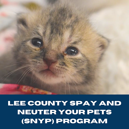 Lee County Spay and Neuter Your Pets (SN