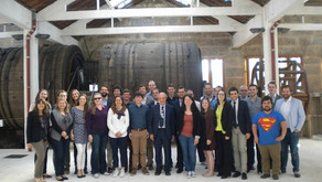 European Younger Chemists Network 2016 Recap