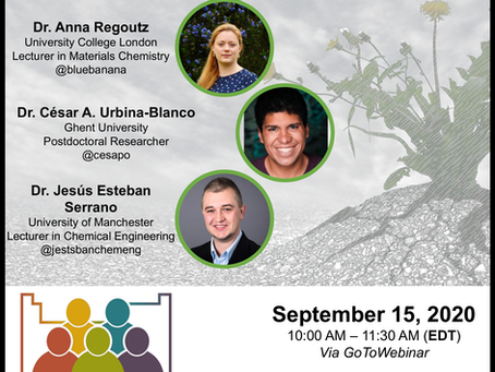 Resilience: a key in overcoming challenges - ChemVoices Webinar