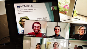 Article: A Virtual Journey in Empowering Early-Career Chemists