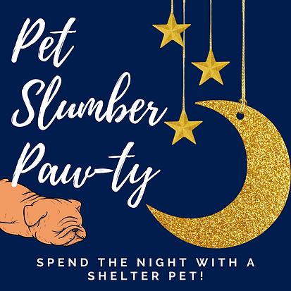 Slumber Paw-ty Extravaganza.png