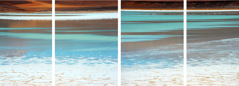 "DAY 3: ""SALT FLAT STROKES""  -  2014 Atacama, Chile"