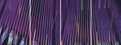 5TH AVENUE (Purple)