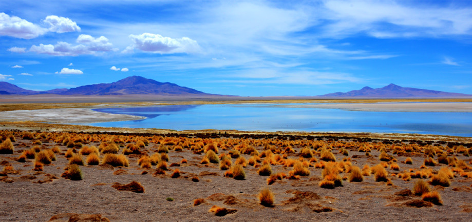 "DAY 59:  ""ATACAMA LANDSCAPE 2""  -  2014  Atacama, Chile"