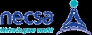 necsa_logo-1_edited.png