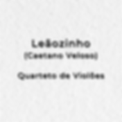 LEAOZINHO.png
