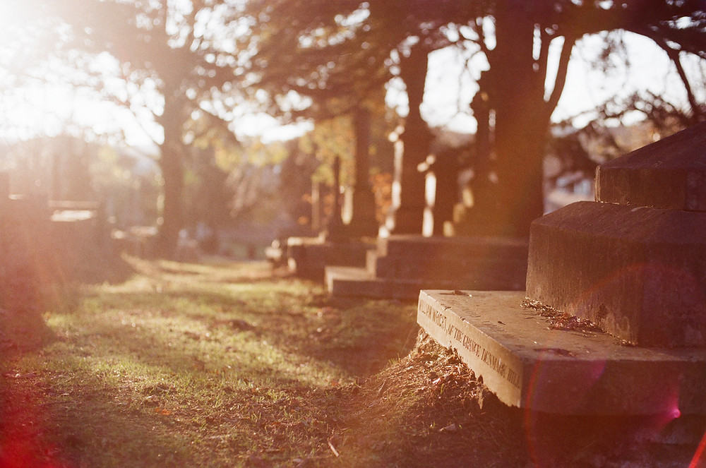 West Norwood Cemetery and Crematorium in the autumn sunshine - photo by Renegade Production