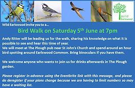 Bird Walk ad1.jpg