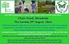 Conservation Chain Pond WE ad.jpg