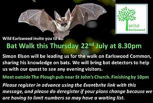 Bat Walk ad.jpg
