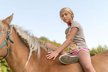die Wechselwirkung Pferd & Kind geht tief