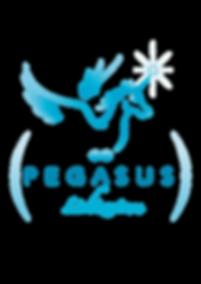 Pegasus Lichtzentrum