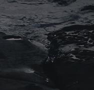 Screen Shot 2020-03-16 at 10.44.19 PM.pn