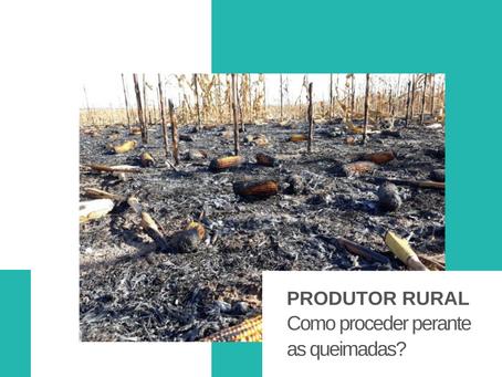 Produtor Rural: Como proceder perante as queimadas?