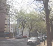 Gryes Ave1.jpg
