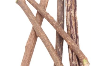 Pure Natural Catnip Sticks
