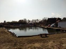 餌釣り専用池