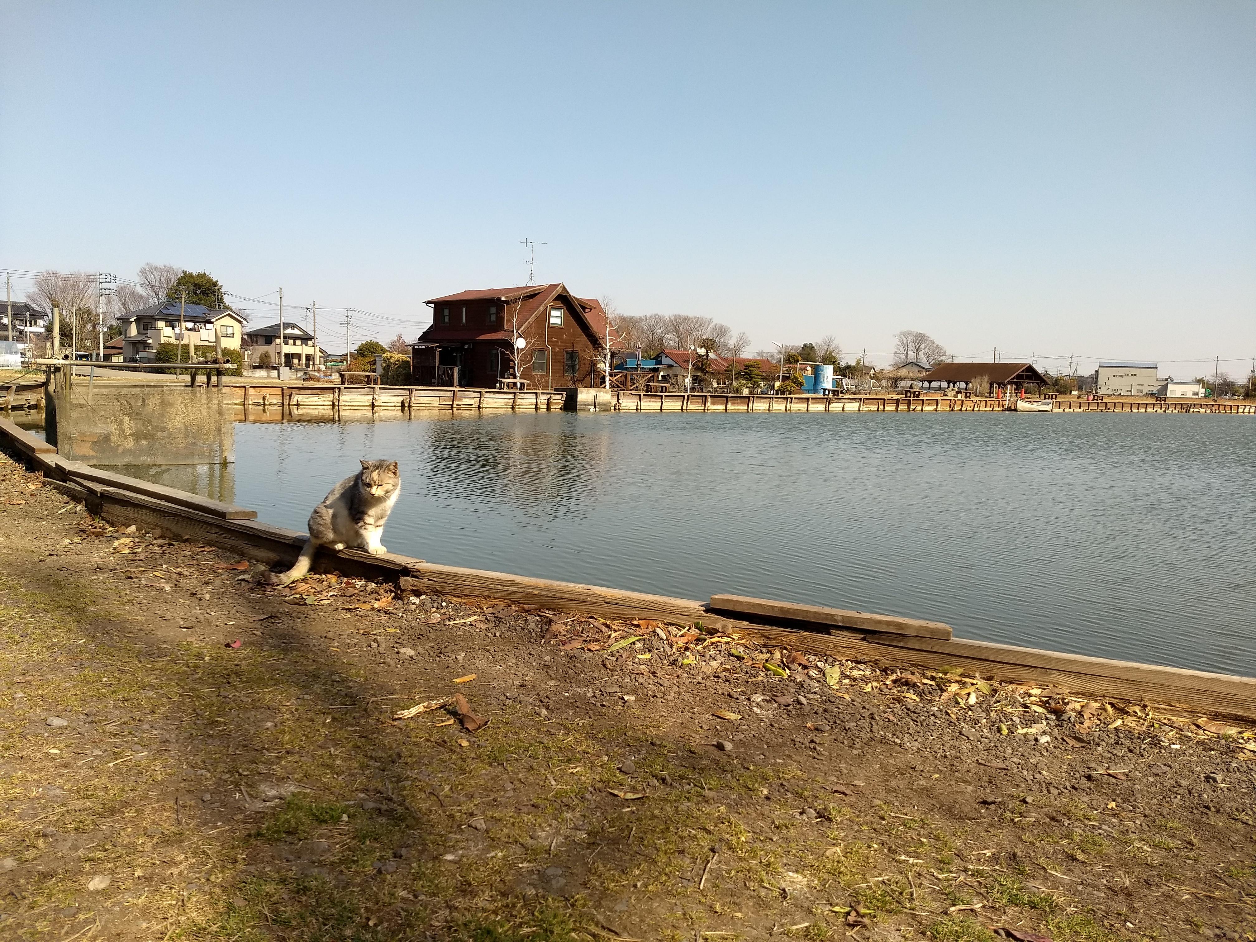 ルアー・フライ専用池