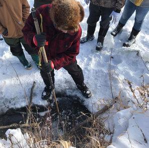 Under Ice Beaver