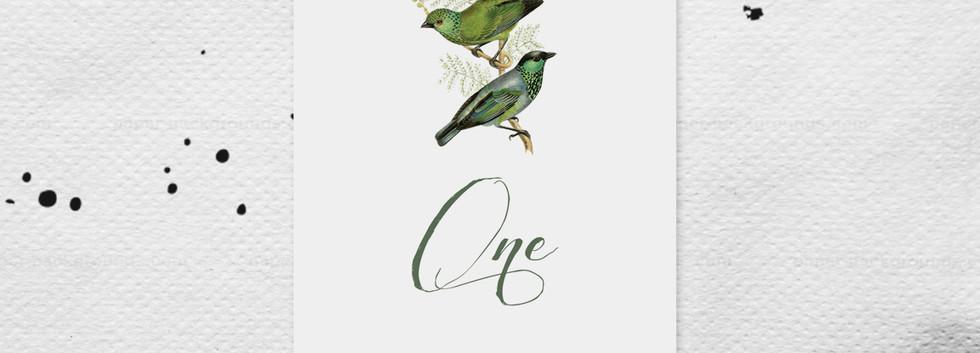 Ornithology Table Number