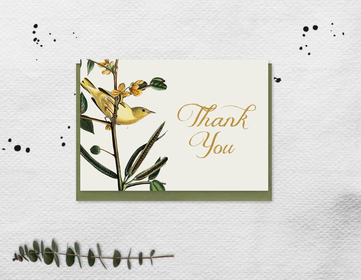 Ornithology Thank You Card