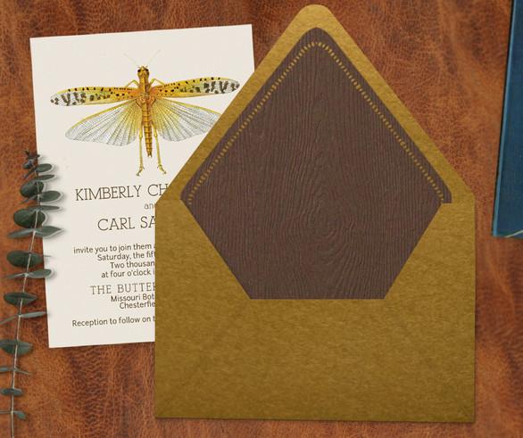 Entomology Envelope Liner