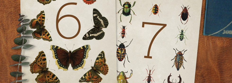 Entomology Table Numbers