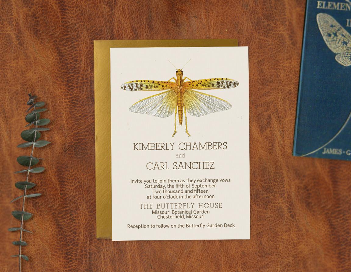 Entomology Invitation