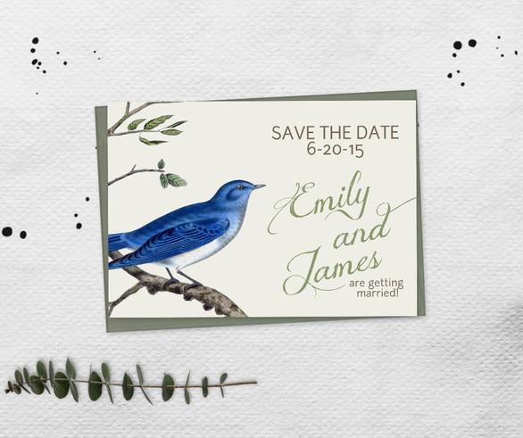 Ornithology Save the Date
